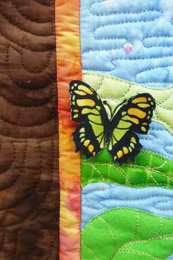 Jungle Island butterfly