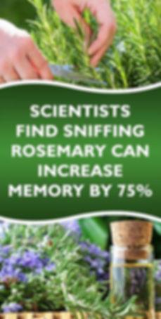 aroma 1 resized.jpg