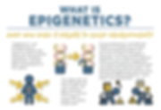 WhatIsEpigenetics_thumbnail_compressed.p