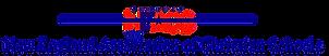 neacs logo.png