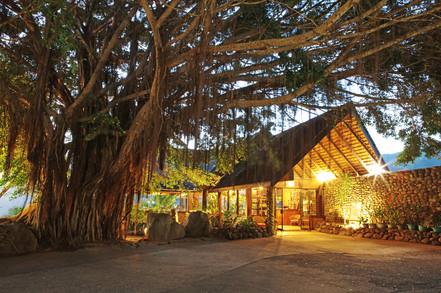 Hiva Oa - Hotel Hanakee Pearl Lodge 4.jp