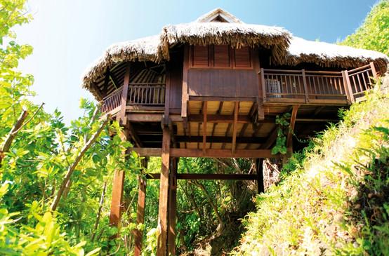 BOB Sofitel Bora Private Island cat Isla