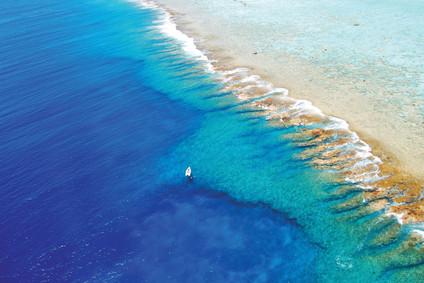 Brando Reef_tbsalandscape16.jpg