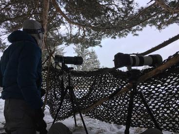 Récit de stage - De la neige en abondance
