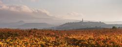 Fall Colors of La Rioja