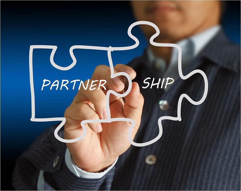 Picasa - Partnership.jpg