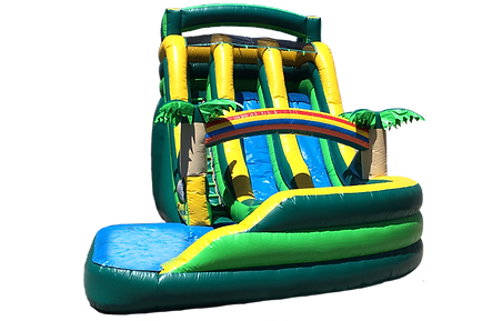 19-tropical-double-lane-slide-1.png