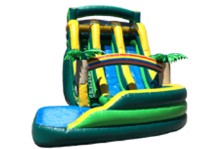 19-tropical-double-lane-slide-th.png