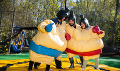 sumo wrestling suits interactive party .