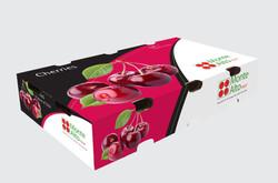 MonteAlto Fruit