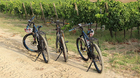 e-bike_tour.jpg