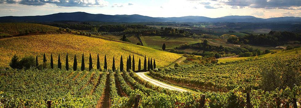 private-wine-tours.JPG