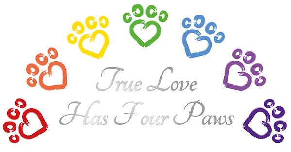 AMF Heart Rainbow logo67.jpg