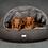 Thumbnail: The Ultimate Perfect Pet Gift Box