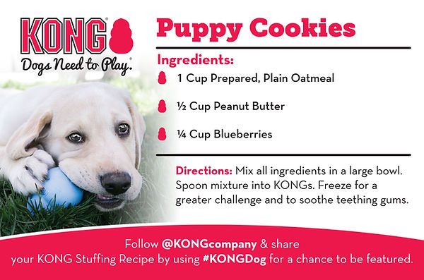 KONG Puppy Cookies Recipe