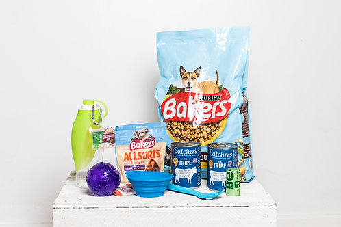 Perfect Pet Essentials for Pets in Crisis