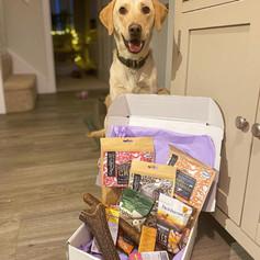 Perfect Pet Treat Box - Luxury with Tough Chews