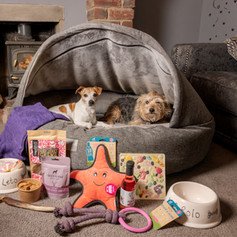 Premium Perfect Pet Gift Box
