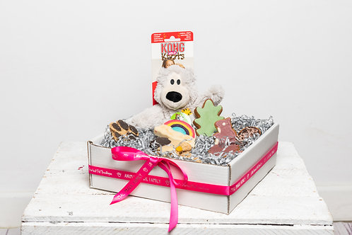 Perfect Pet Treat Box for Dogs - Biscuit Lover with Toy