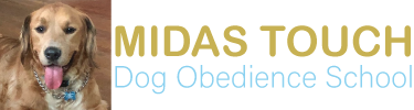 Midus_touch_logo2.png