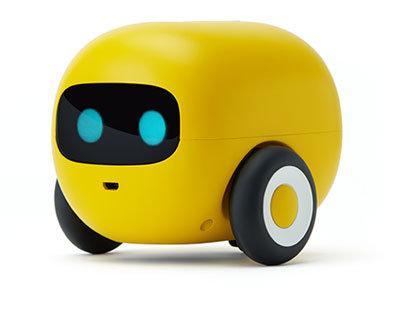 Location Mangobot + Dash + Ozobot