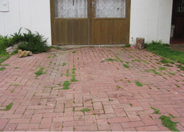 Untreated Paving