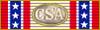 CSA TC Ribbon.png
