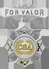 VMI For Valor Medal.png
