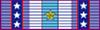 ANV_Inf_Div_Ribbon.png