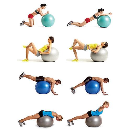 כדור פיזיו גדול מגוון גדלים