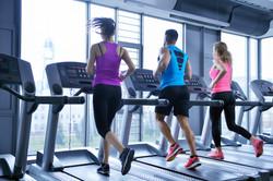 הליכונים ומסלולי ריצה