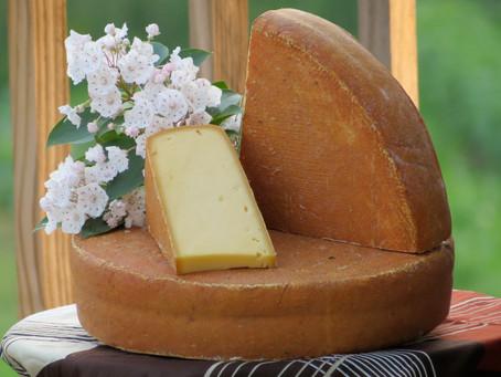 Last Cheese Standing