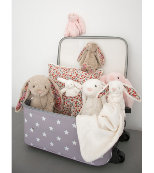 valise-a-roulettes-2
