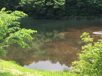 谷地中地区水辺農村公園