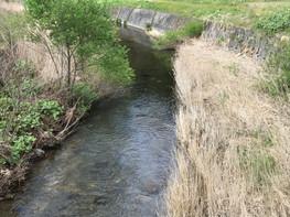 北上川水系 涼川