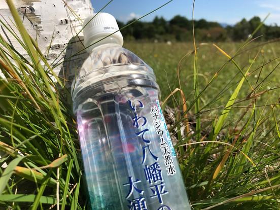 金沢清水 いわて八幡平の大湧水