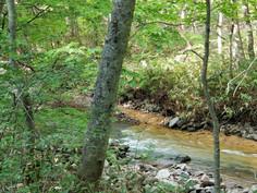 手つかずの大自然による自然の造形美。七時雨(ななしぐれ)カルデララインを行く。 #八幡平市 #七時雨 #カルデラライン #自然美 #マウントトレイル