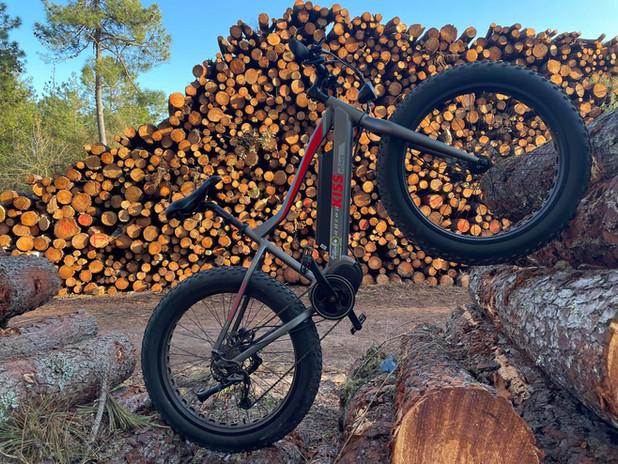 Location vélo Fat Bike électrique à St J