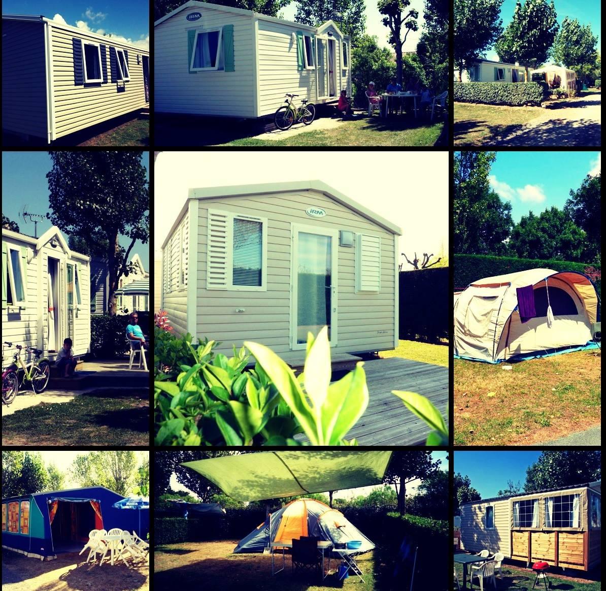 Vélivélo, location de vélos au camping P