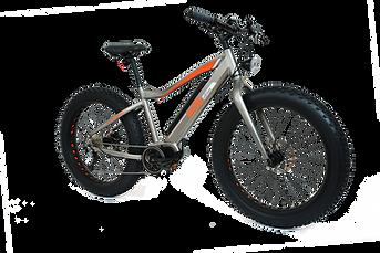 Fat Bike Electrique Vélivélo Location de