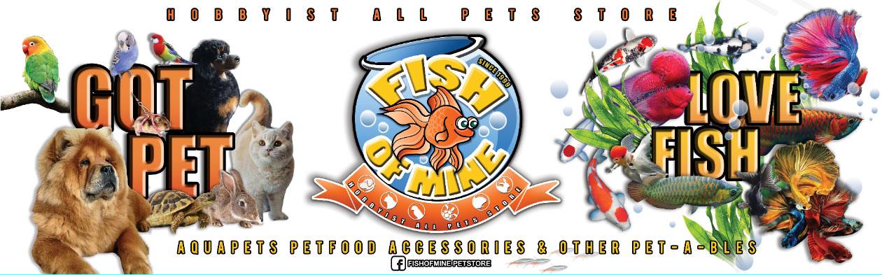 FISH OF MINE BANNER