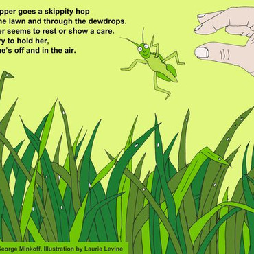 The grasshopper poem