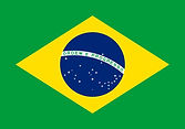 brazil-flag-icon-free-download.jpg