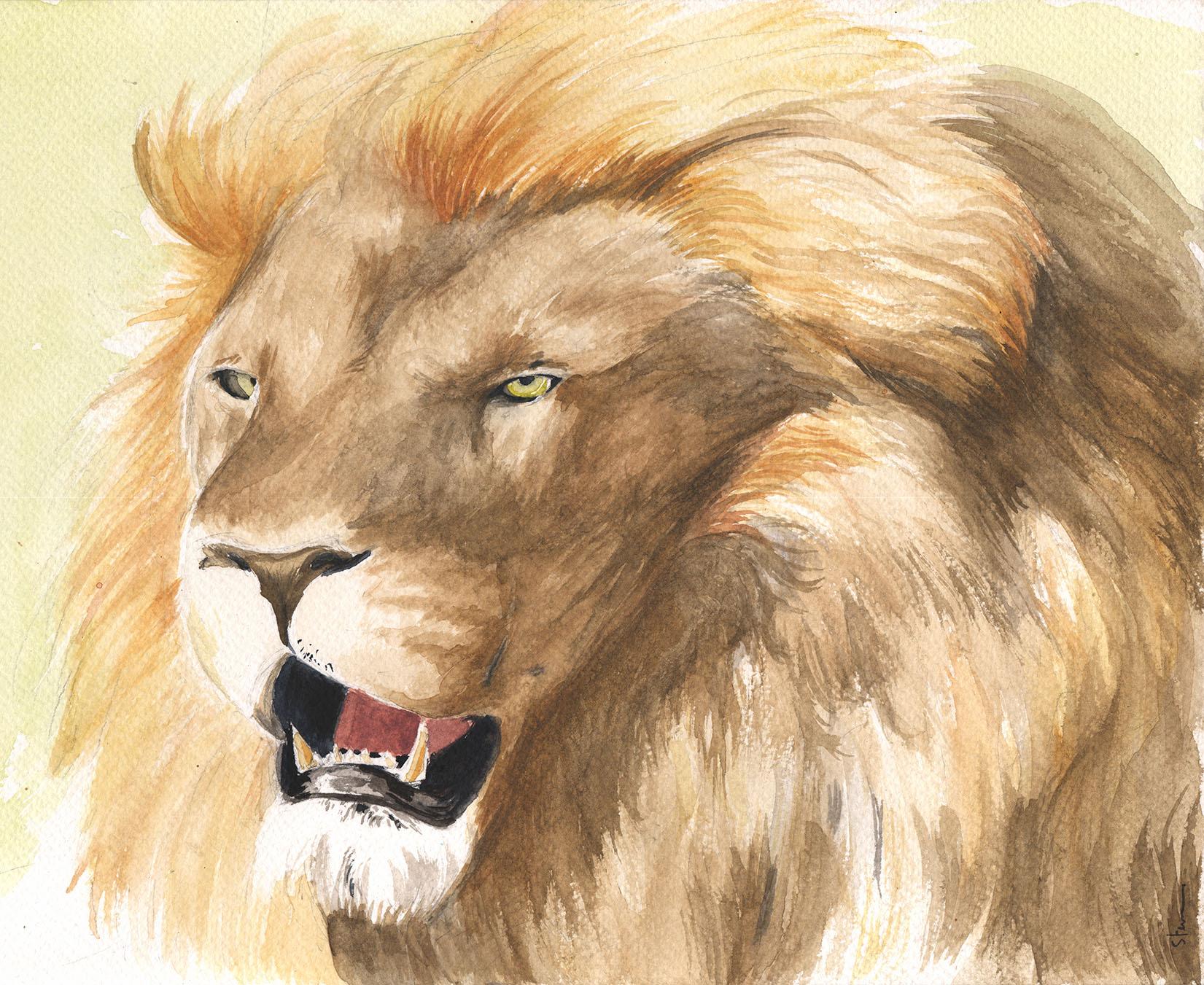 aquarelle lion