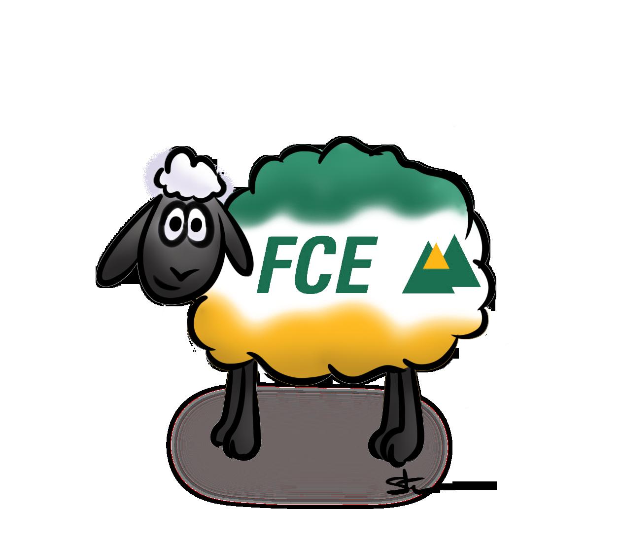 mouton fce