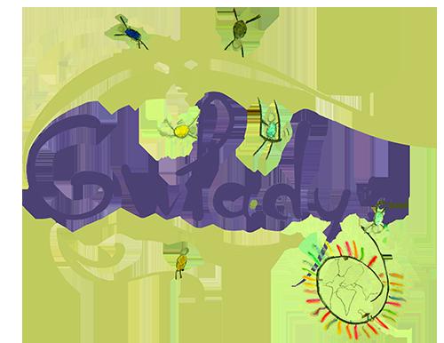 Logo gwladys