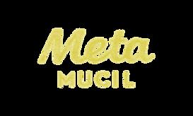 metlogo.png