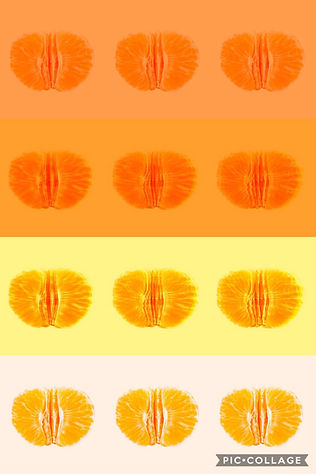 FFFF oranges.JPG