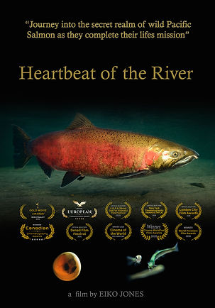 heartbeat of the river poster web.jpg