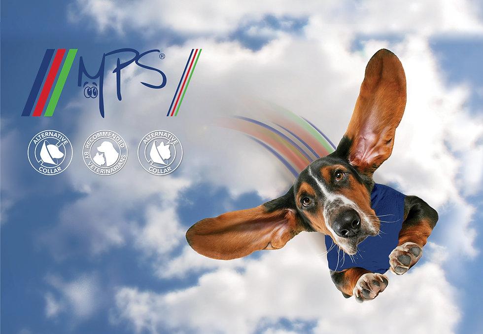 MPS-1737x1200-4.jpg